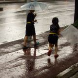 Jeju Rainy Day Mix