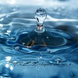 MORLESE-liquid dnb mix #4