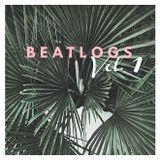 Beatlogs Vol. 1