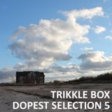 Trikkle Box - Dopest Selection 5