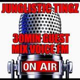 Dj Hovis Junglistic tingz mix taken from klip & outlaw show Voice Fm