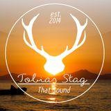 Ibiza Bootleg #1 - Tobias Stag
