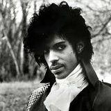 D.J. R.P.M. - Prince Tribute Mix