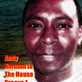 Andy Norman In The House Groove 1