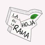 Entrevista a La Hoja En La Rama