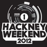 Annie Mac - Live @ Hackney Marshes, UK - 23.06.2012