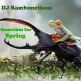 DJ Rambunctious - Somethin for Spring