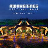 Sam Paganini - Live @ Awakenings Festival 2018, Area Z (Spaarnwoude, NL) - 01.07.2018