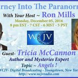 Journey into the Paranormal with Ron Mills_20161205_Tricia McCannon