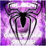 Mr.Now aka Cris Cok (3PungdKurt) - Giant Spider Strikes!