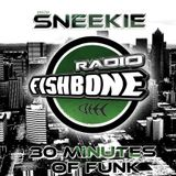 DJ SNEEKIE - 30 Minutes of Funk 4 (ft. Jamster + Dogmother)