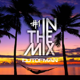DJ Tofman - Tropical House Music Only [In The Mix #1]