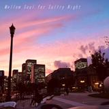 #21 Mellow Soul for Sultry Night | Andre Solomko,James Mason,Mayer Hawthorne,Erykah Badu,山下達郎,Sade