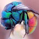 Dj Atman - Psychedelic Fly (mix) 2014_03_16