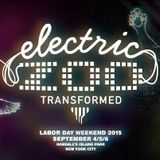 ELECTRIC ZOO - you got the love new york 2015