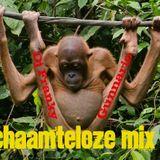 dj franky and  dj gunnario @  the mix     schaamteloos