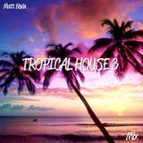 Matt Nevin Tropical House Mix 3