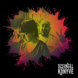 DJ Ren b2b Mentalien - Best Of 2017 at Dzsungel Konyve 2017.12.26