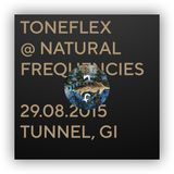 Toneflex @ natural frequencies 5, 29.08.15, Tunnel, Giessen