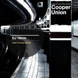 DJ Herm - DeeperSoul Blog (Guest Mix)
