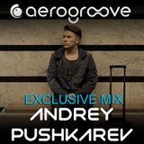 Andrey PUSHKAREV - Aerogroove Podcast [www.aero-groove.com]