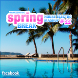 Yankee's House & Electro MashUp #11 (Springbreak Mix) (2013)