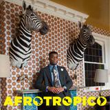 Afrotropico