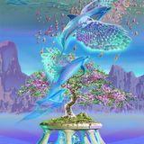 Cosmic Minstrels of the psycadelic OM-8