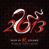YEAR OF THE SNAKE - Mixed by Trevor Walker
