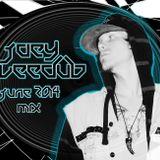 Joey VeeDub JUNE 2014 Mix