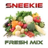 DJ SNEEKIE - FRESH vol 1