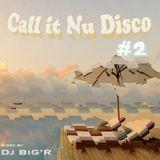 Call It Nu Disco #2
