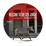 Welcome To The City Jungle mixtape - compiled and mixed by Daniel Stetting