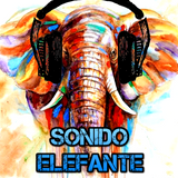 SONIDO ELEFANTE capítulo 1