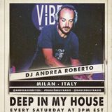 DJ Andrea Roberto (Milan, Itlay) - Deep In My House 087 (Live on www.dancegruv.net)