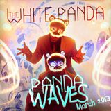 Panda Waves (Ep. #5)