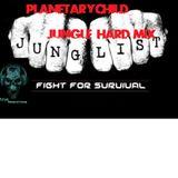 junglist hard mix PLANETARYCHILD