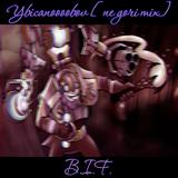 B.I.F. - ybicanoooobov [ne gori mix]