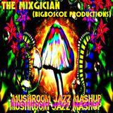 The Mixgician - Mushroom Jazz Mashup