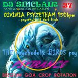 DJ SINCLAIR H37 DIVINIA PSYZETHAM 150bpm THE PSYBIRDS