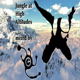 Jungle at High Altitudes mixed by DJ CB₁