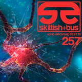 Sonic Electronic Episode 257 (melodic and expansive progressive house, trance, and  techno)