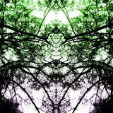 Chlorophil -Dream Forword ( AstroPilot Music dj mix)