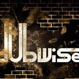 L.U.I. - Dubwise FM Basssucht Radio Show 27.08.2013