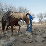 Interview with Mark Bolender of Bolender Horse Park about Obstacle Trail Courses