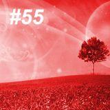 Beauty Trance #55