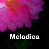 Melodica 10 July 2017 (from Ibiza)