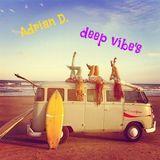 Adrian D.  _Ain't Nobody_deep mix