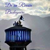 De un Rincón Bodeguero - Programa Nº 15 - Post vs. Defensa y Justicia (0-1) - Fecha 7 - Superliga