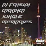 DJ Frisky - Toronto Jungle Memories